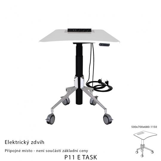 P11 E TASK (2)